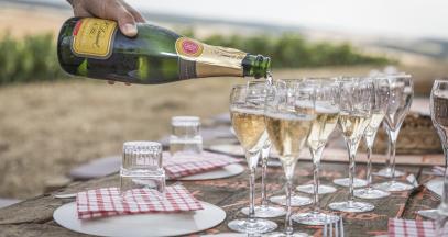 Wine tasting in the vineyard of Champagne ©Olivier_Frajman_Protographe