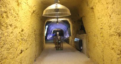 Espace sensoriel, jeu ludique pour découvrir les arômes dans le vin © Caves Ambacia
