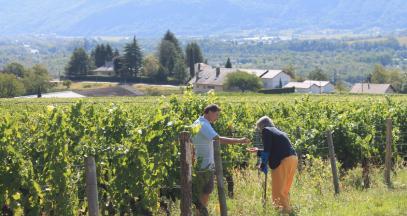 Rencontre avec un vigneron dans les vignes de Savoie © Camille Faure-Brac