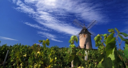 Moulin à vent Beaujolais vineyard ©Daniel Gillet Inter Beaujolais