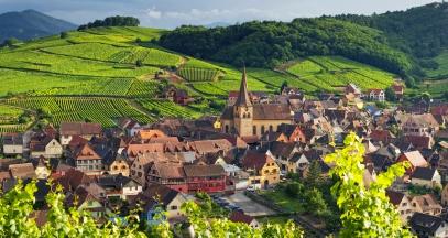 Niedermorschwihr vignoble alsace ©Zvardon Conseil Vins Alsace