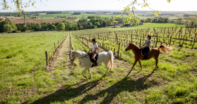 Horse back riding through the vineyards © Interprofession des Vins de Bergerac et de Duras