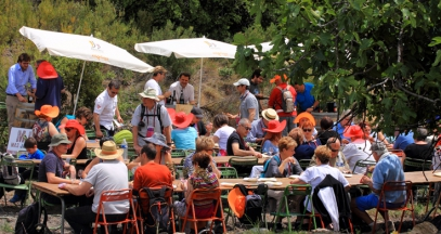 Amorioles de Maury balade gourmande dégustation vins roussillon ©Cru Maury