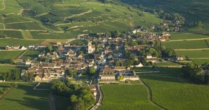Château over vines © Château de Pommard