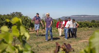 Walks in the vineyards wine tasting cellar tours in Provence ©S. Spiteri