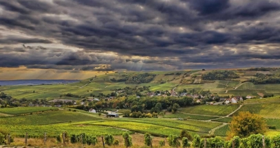 Sancerre, vignoble du Val de Loire © Christophe Mouton