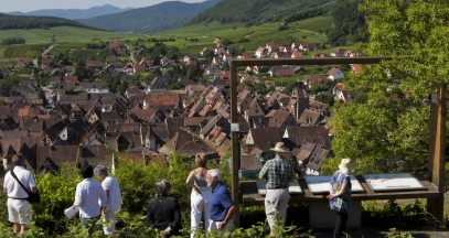Walking along the wine paths on the Route des Vins d'Alsace © MEYER-ConseilVinsAlsace