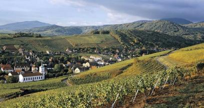 Châteaux forts, vins d'Alsace et gastronomie en Pays de Barr ©Z-Vardon-conseil-vins-alsace
