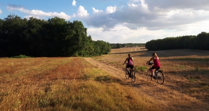 Discovering Sancerre, Pouilly and Giennois by bike ©Office de Tourisme Loire Vignobles et Nohain