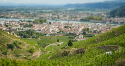 Tain l'Hermitage wine growing on terraces informative trip cote du rhone ©Inter Rhône