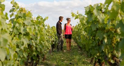 Visite dans les vignes - Domaine Colin © C. Mouton – CRT Centre Val de Loire