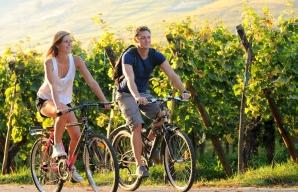 Vignoble_Alsace ©Dumoulin - Conseil Vins Alsace