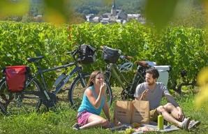 A vélo dans le vignoble de la Vallée du Loir - Chahaignes © J. Damase