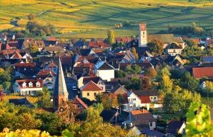 Bergholtz-zell et Orschwihr vignoble d'Alsace ©Vincent Schneider