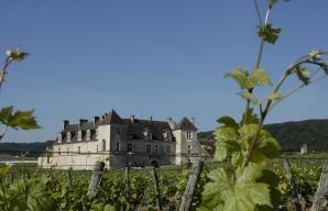 Château Clos de Vougeot vignoble bourgogne pass dijon côte de nuits ©Office de tourisme de Dijon - Atelier Demoulin