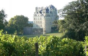 Chateau de Brissac Loire Valley vineyard © Christian Vital