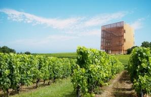 La Caborde Jura wine-growing area ©LaCaborde