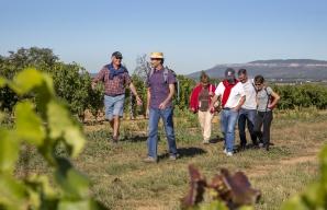 Randonnées pédestres dégustation vin visite caves en Provence ©S. Spiteri