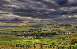 Sancerre Loire Valley vineyard © Christophe Mouton