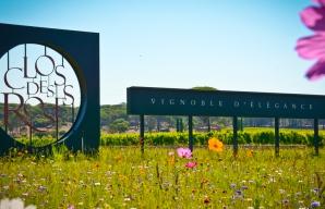 Séjour vendanges en Provence au Clos des roses ©DR