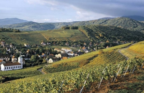 Fortified castles wines from Alsace and fine food ©Z-Vardon-conseil-vins-alsace