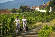 Bike ride through a vineyard © ADT Infra