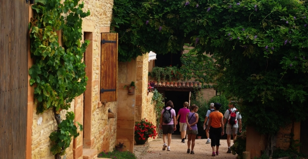 Food-lovers' walks in Beaujolais with Cadoles et Sens © N. Leroux