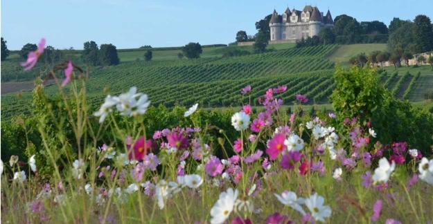La Vinata vignoble de Bergerac ©F. Millo