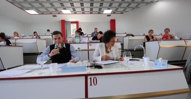 Learn about wine at l'Université du Vin of Suze-la-Rousse in the Rhône Valley