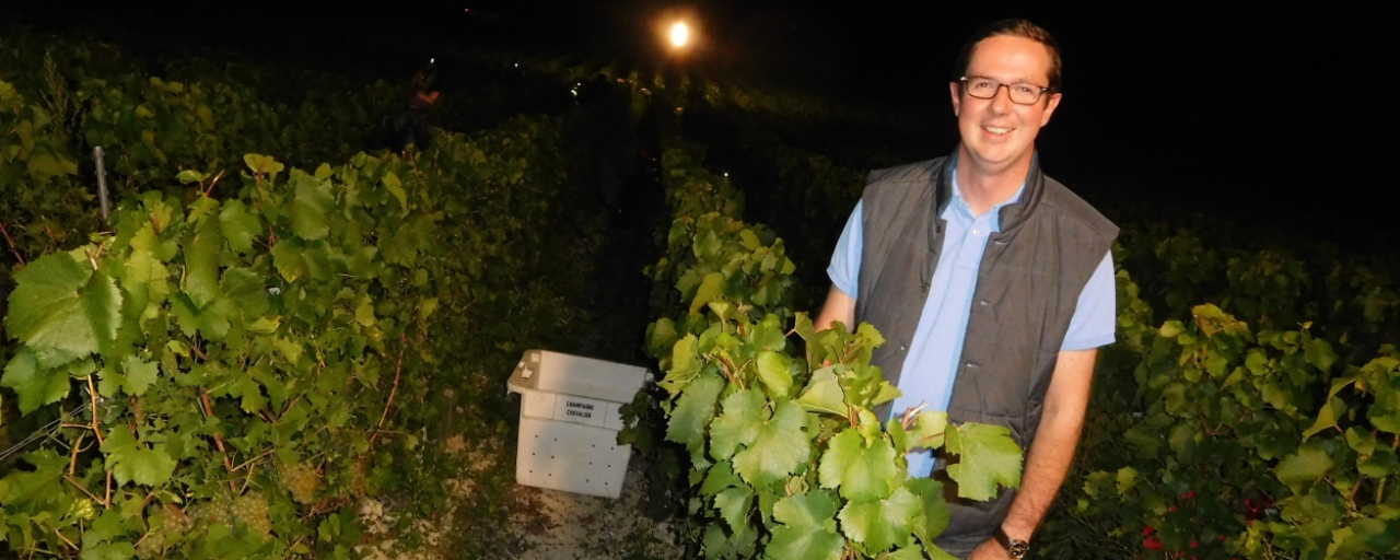 Bertrand Trepo - harvesting by night in Champagne © Philippe Jacquemin