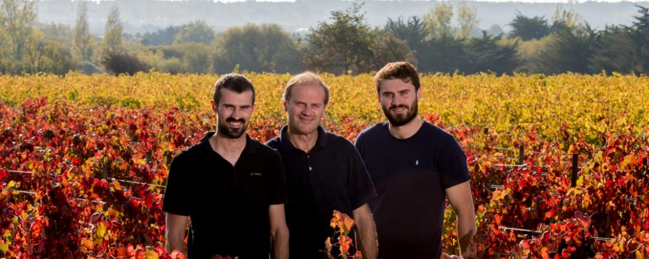 Thierry Michon, Loire Valley Vineyard