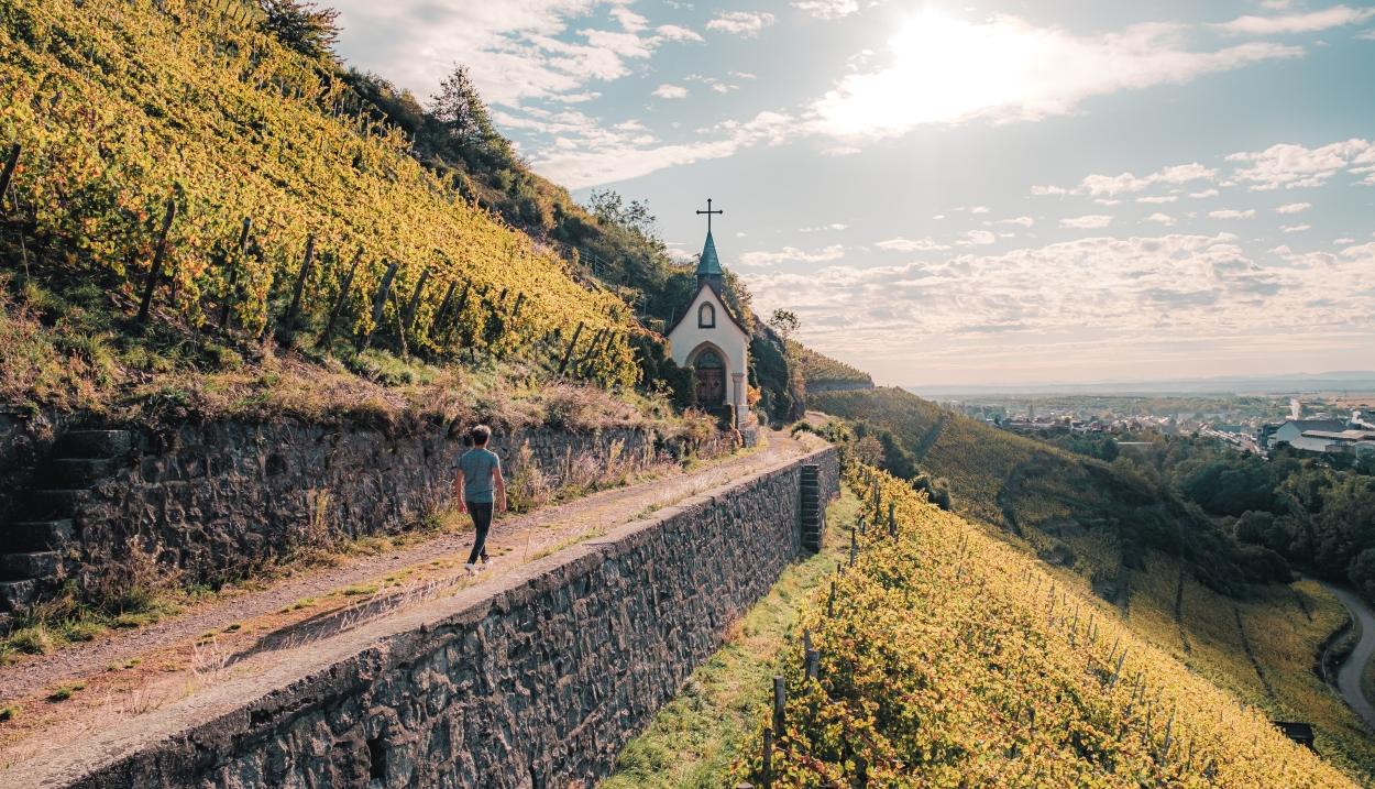 Fascinant Week-end dans le vignoble d'Alsace © Lez Broz - Visit Alsace