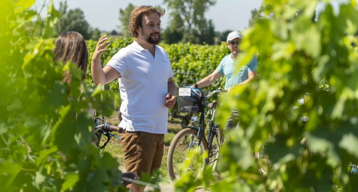 Spending the day cycling through the vineyards of St-Emilion © Bordovino