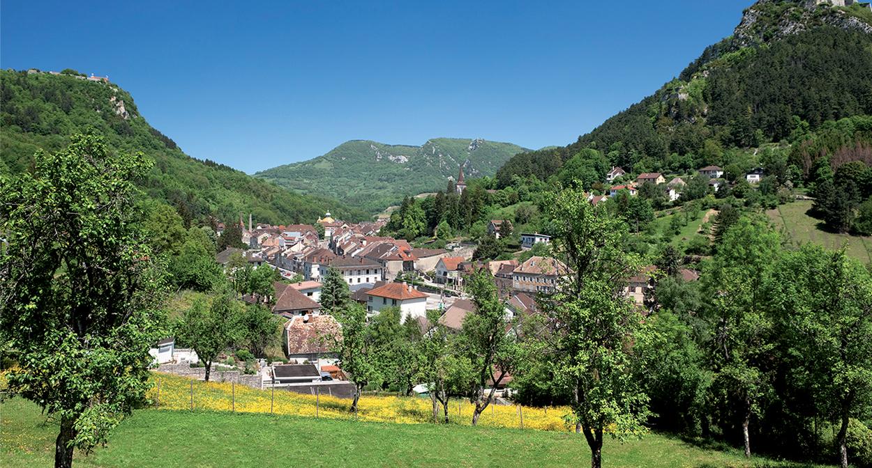 Salins-les-bains, vignoble du Jura