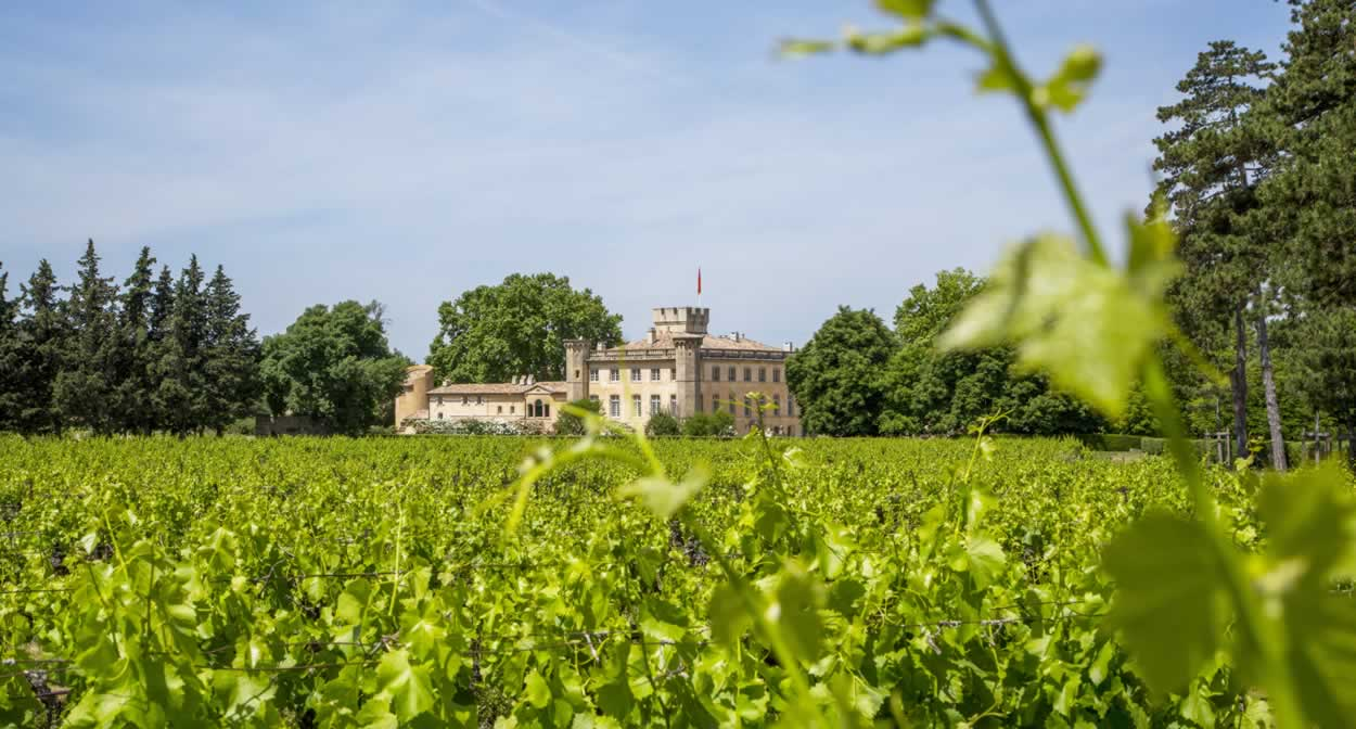 Villa Beaulieu, guest house and vineyard in Provence© S. Spiteri