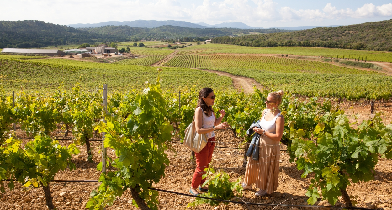Visite of domaine de Cantarelle © ProvenceVerteVerdon.fr/F.Galile