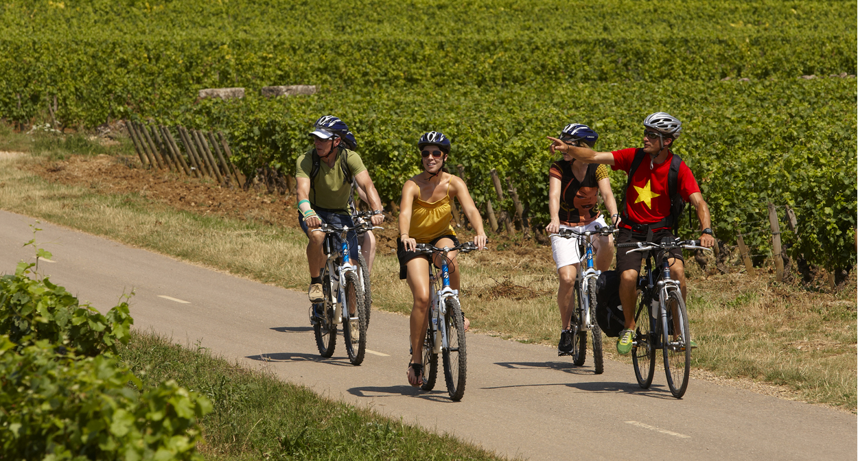 A bike trip in the vineyards of Bourgogne