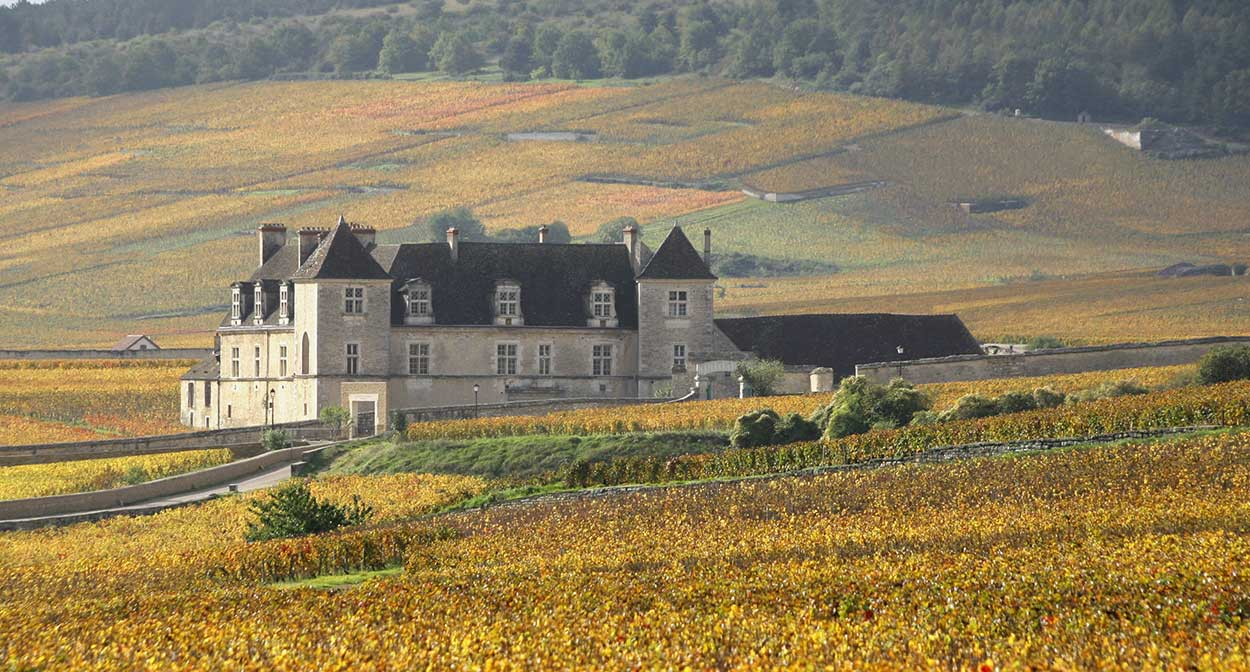 Clos de Vougeot Chateau in Burgundy